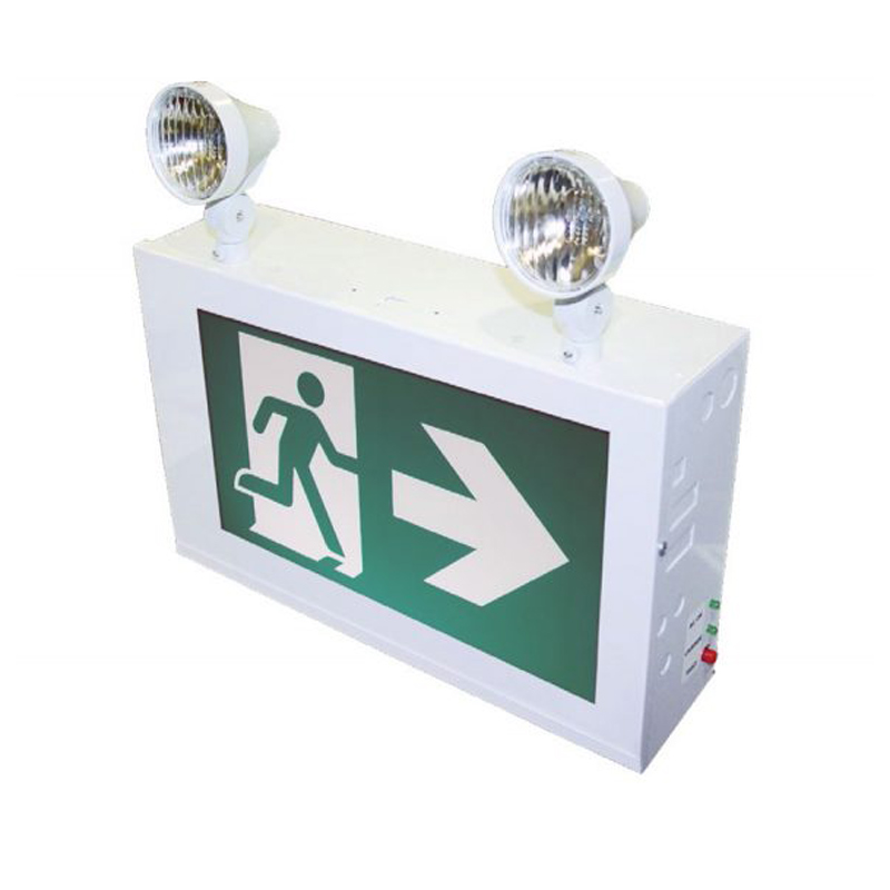 Photo of RMSLC-Series - Stanpro Running Man/Pictogram Combination Units -Steel Unibody