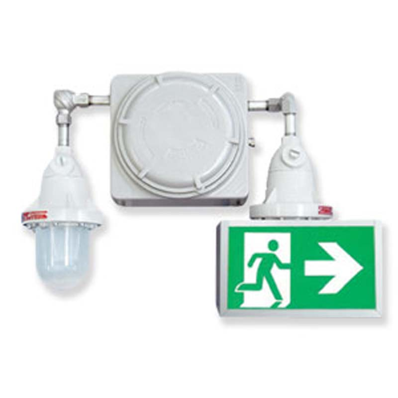 Product Photo of NA-EXP-RGXPICTO-Series - Emergi-Lite/Lumacell Running Man/Pictogram Combination Units - All Hazardous Series