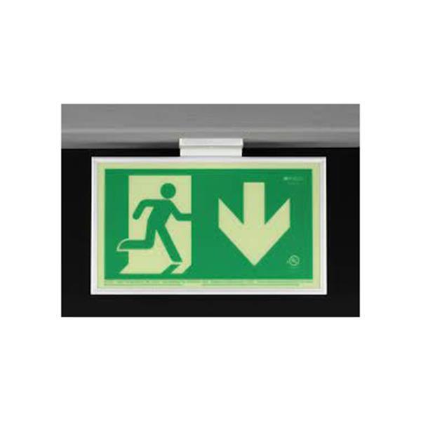 Product Photo of PHOTO-RM-RD50-CA - Ecoglo Self-Illuminating Photoluminiscent Framed Running Man Sign - Arrow Down